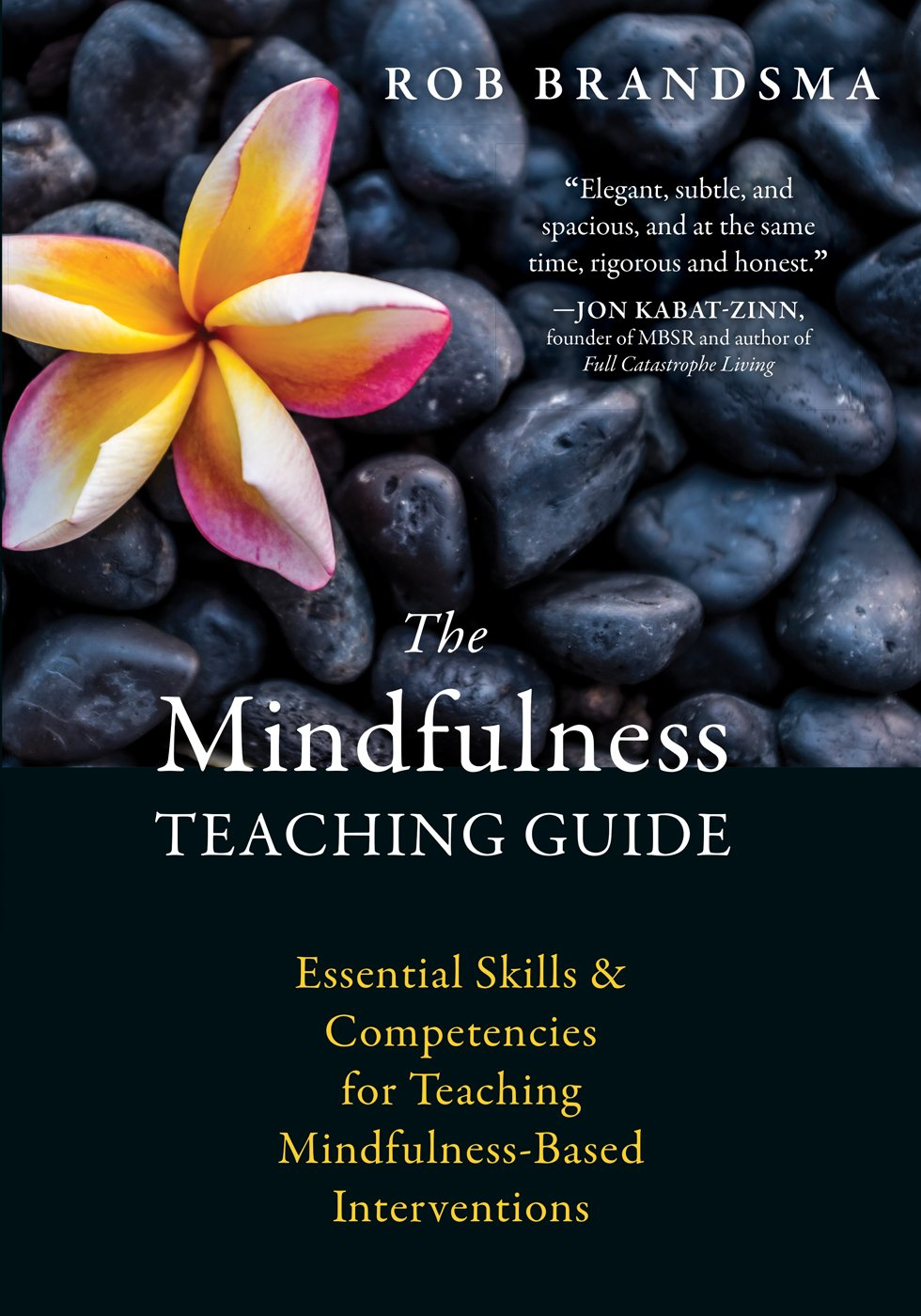 The Mindfulness Teaching Guide: Essential Skills and Competencies for  Teaching Mindfulness-Based Interventions: Rob Brandsma: 9781626256163:  Amazon.com: ...