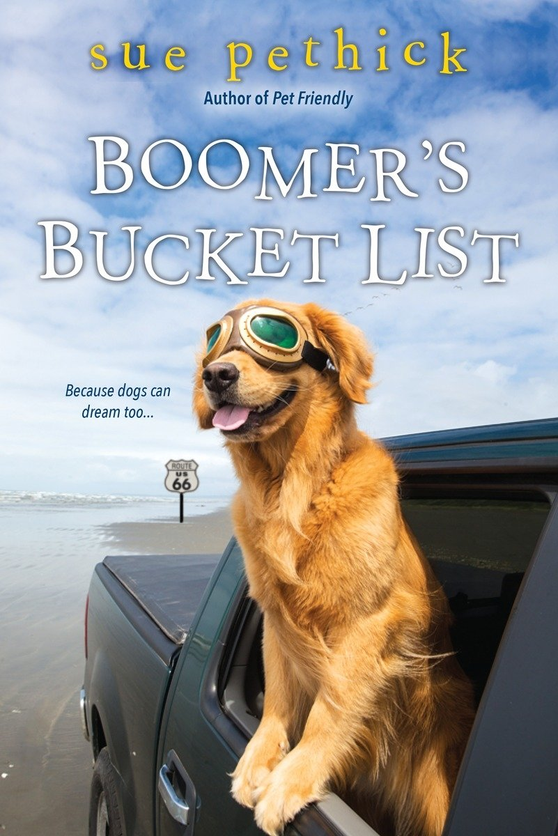 Boomers Bucket List Sue Pethick product image