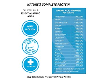 Iconic Bebida de proteína a base de plantas, trufa de ...