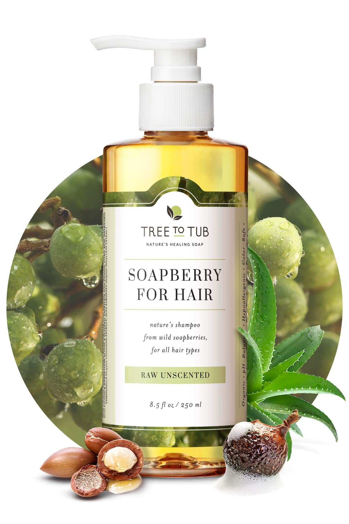 Fragrance Free Shampoo for Sensitive Skin by Tree To Tub - pH 5.5 Balanced Unscented Shampoo with Organic Moroccan Oil, Wild Soapberries 8.5 oz