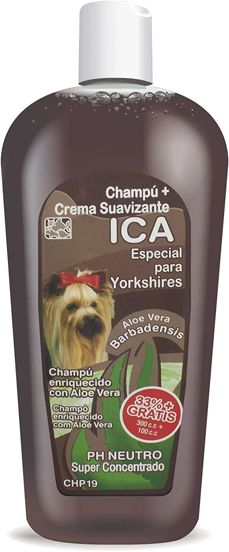 ICA CHP19 Champú con Aloe Vera para Yorkshire