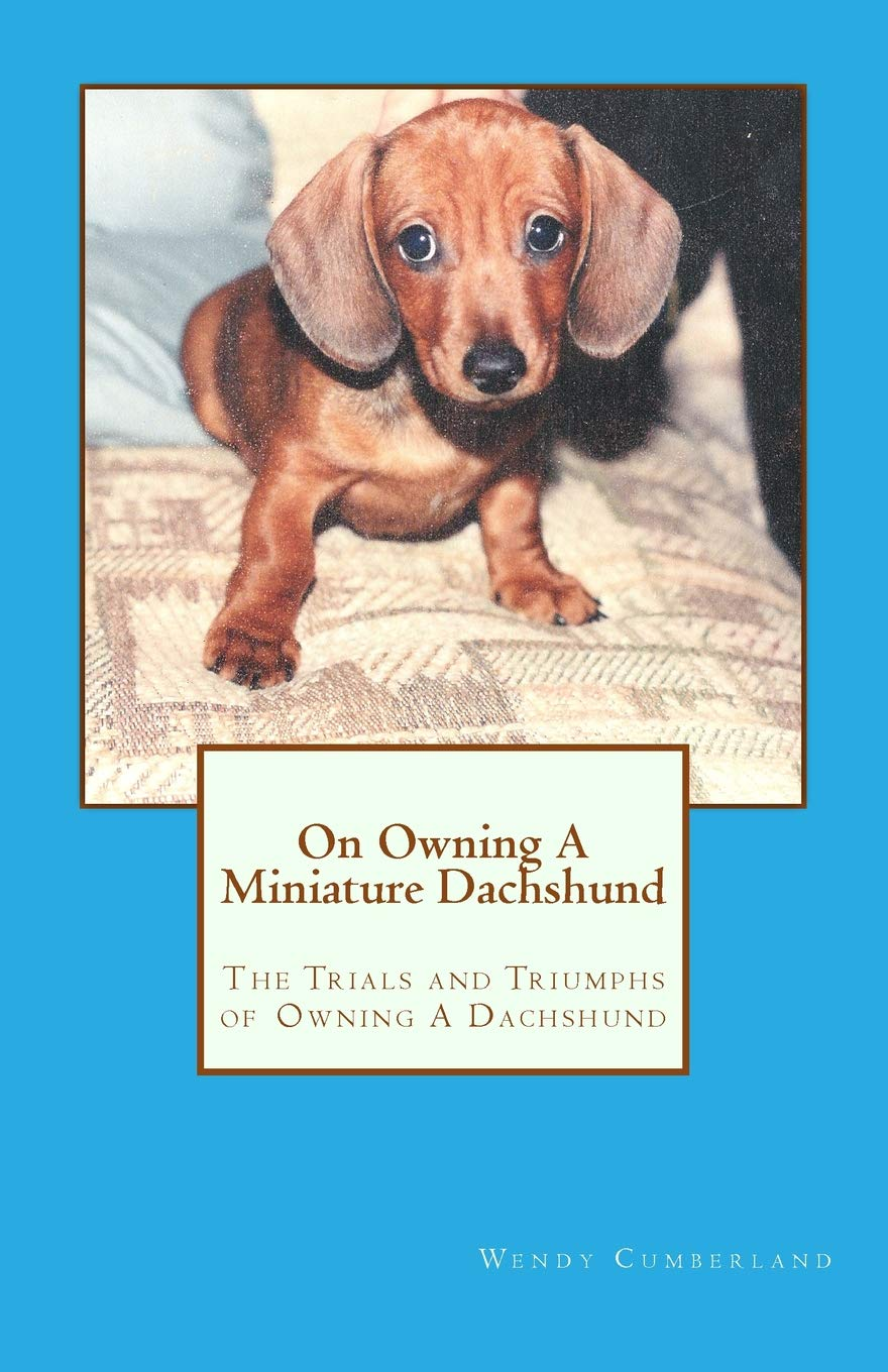 On Owning A Miniature Dachshund The Trials And Triumphs Of Owning A
