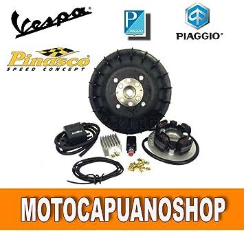 Pinasco Flytech Kit grupo eléctrico Volante 1,6 kg para Vespa PX 150: Amazon.es: Coche y moto