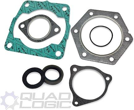 3085098 3084795 Polaris 300 Xplorer 300 Xpress 300 2x4 4x4 Top End Gasket Set