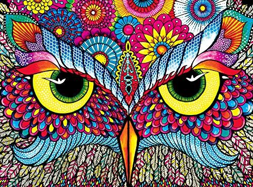 Buffalo Games - Vivid Collection - Owl Eyes - 1000 Piece Jigsaw -