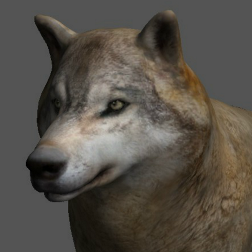 Wolf Pose Tool 3D