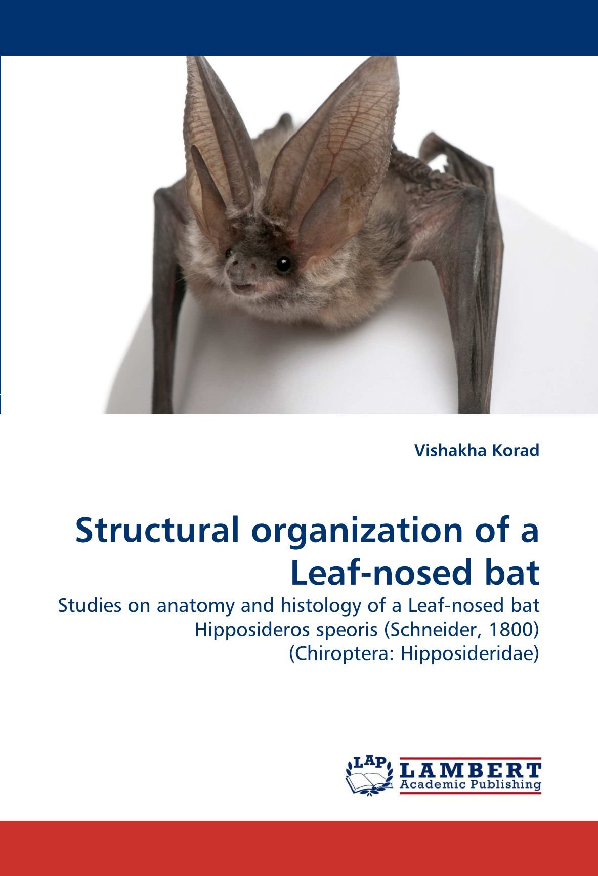 Structural Organization Of A Leaf Nosed Bat Studies On Anatomy And