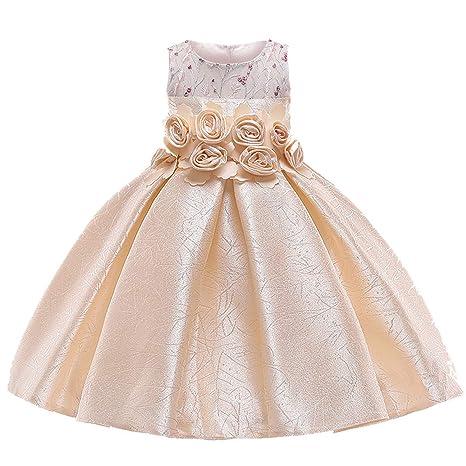 9279fce688e9 Amazon.com: Kids Dresses for Girls Dress Summer Elegant Children Evening  Party Dresses Flower Girls Wedding Dress,Champagne,8: Kitchen & Dining