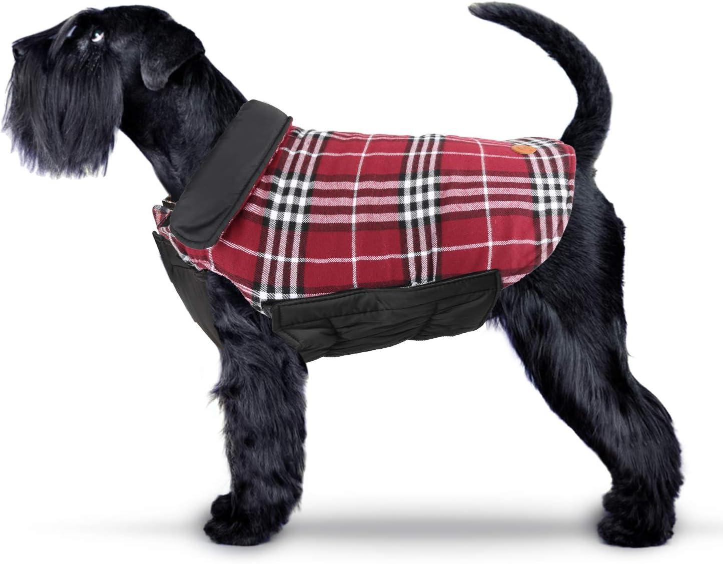 IREENUO Abrigo Perro Chaqueta Perro Invierno Ropa Escoces Acolchado para Perro Pequeño y Mediano