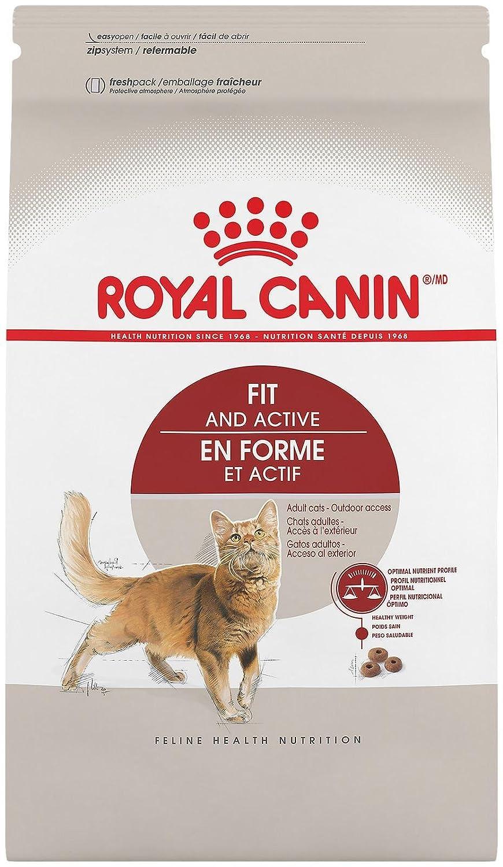 Amazon.com : Royal Canin Feline Nutrition Adult Fit 32 - 3Lb : Pet Supplies