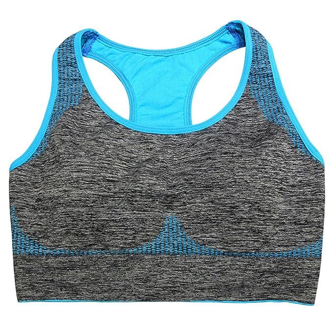 Mujeres acolchado superior chaleco atlético gimnasio Fitness deportes sujetador elástico algodón sin costuras: Amazon.es: Ropa y accesorios
