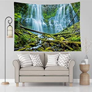 Vikes Forest Tapestry,Proxy Falls Willamette National Forest Central Oregon,Tapestry Wall Hanging Art for Living Room Bedroom Home Decor,80x60 in