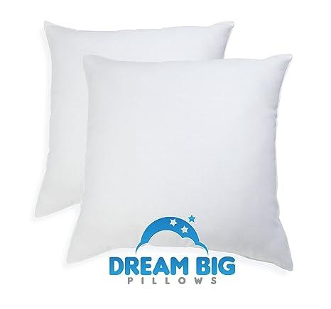 Amazon.com: Euro Lote de 2 almohadas (26 x 26 inch) Inserts ...