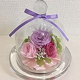 liLYS épice プリザーブドフラワー バラ 薔薇 3輪 誕生日 結婚祝い ギフト お祝い などに 【5色・ 2タイプのガラスドームアレンジ 】 (エレガントパープル【リボン付き】)