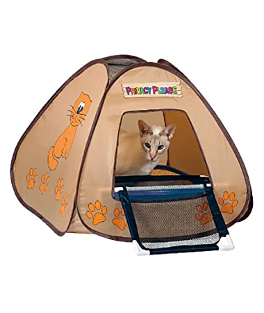 Pet Store Privacy Please Cat Litter Box Tent w/ Mesh R&  sc 1 st  Amazon.com & Amazon.com : Pet Store Privacy Please Cat Litter Box Tent w/ Mesh ...