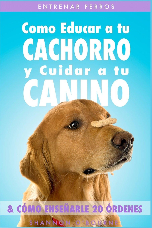 Entrenar Perros: Como Educar a tu Cachorro y Cuidar a tu Canino (& Cómo Enseñarle 20 Órdenes) 2