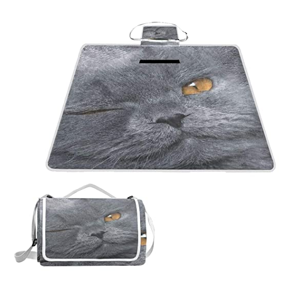 Amazon.com: Manta de pícnic con diseño de árbol de rama y ...
