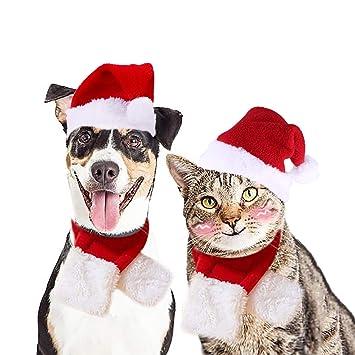 Legendog Cat Christmas Costume, Cat Costume Christmas Adjustable Santa Hat  and Scarf Pet Christmas Costume - Legendog Cat Christmas Costume, Cat Costume Christmas Adjustable