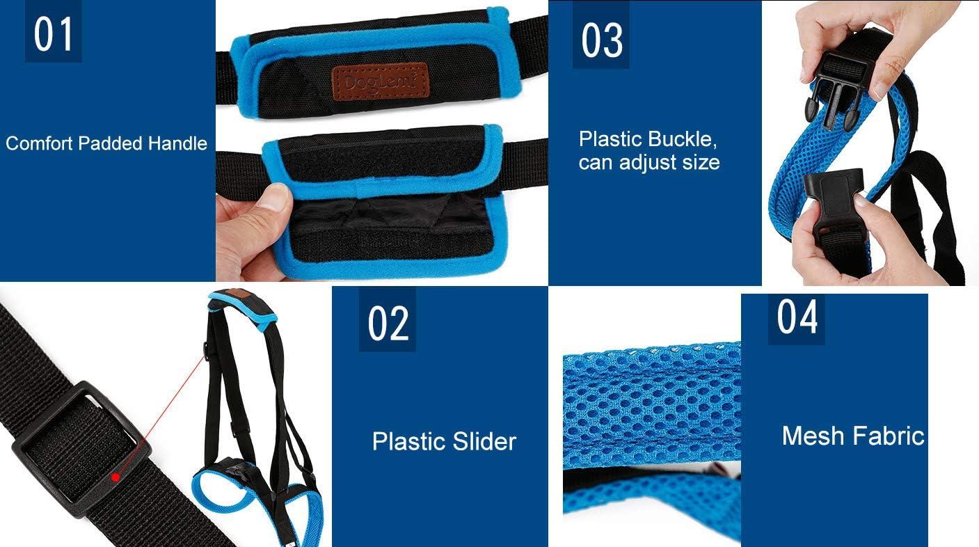 Le harnais RC GearPro Dog Lift pour les pattes arri/ères et les /élastiques de soutien pour animaux domestiques aident les jambes faibles /à se lever arthritiques bless/és