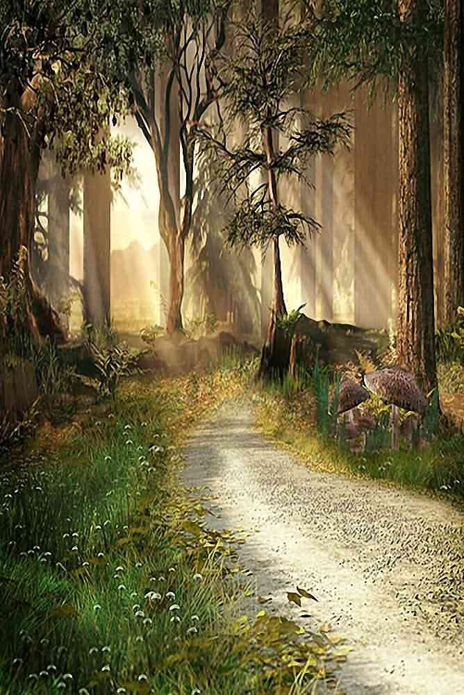GladsBuy Road In Woods 8 x 12 Computer Printed Photography Backdrop Nature Theme Background ZJZ-149