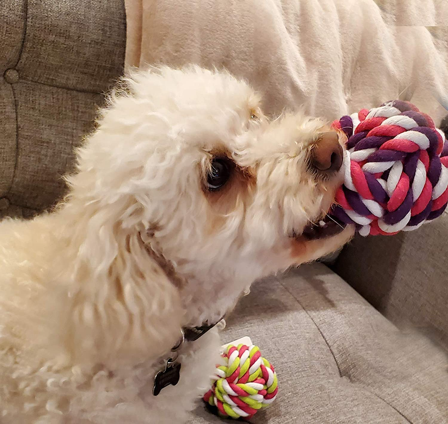 Rope Toy for Pets 4 Pack Zelica Twisted Knot Rope Dog Toy Ball Fun Exercise Toy for Aggressive Chewer Dogs