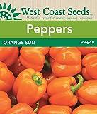 Pepper Seeds - Orange Sun