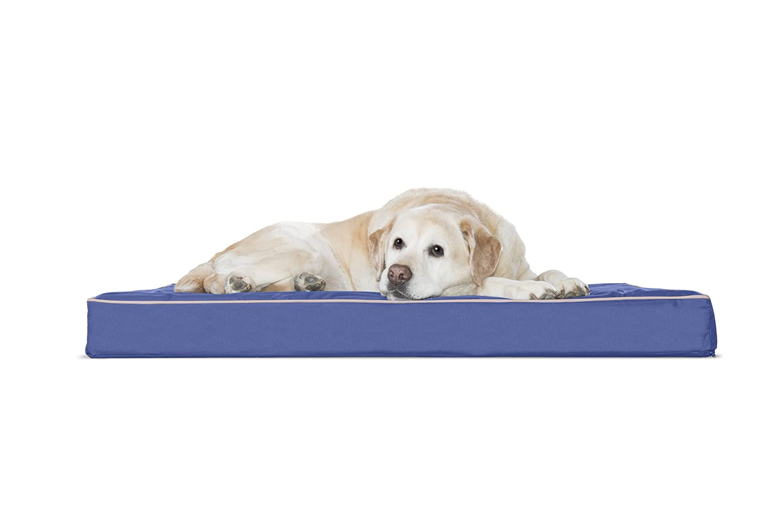bluee w  Tan Trim JumboFurHaven Pet Dog Bed   Deluxe Orthopedic Polycanvas Indoor Outdoor Garden Pet Bed for Dogs & Cats, Jungle Green, Large