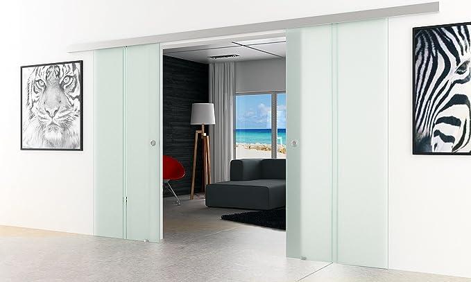 Puerta corredera con 2 láminas de cristal | Diseño: satén con 2 claras vertical de rayas | Tiradores/mango de tabla | 2 piezas 1025 x 2050 mm LEVIDOR Basic sistema - protector