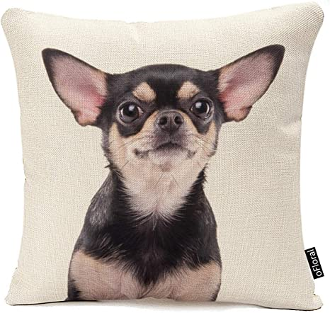 Amazon Com Ofloral Chihuahua Decorative Throw Pillow Covers Cotton Linen Square Cushion Covers Sofa Pillow Cases Couch Home Decor 18x18 Inch Home Kitchen