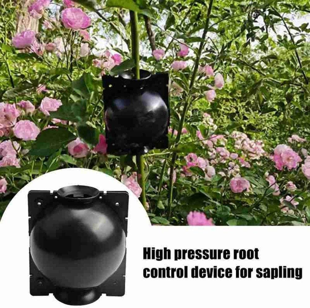 Reusable Plant Rooter Box High Pressure Root Grafting Box Growing Breeding Case Gardening Supplies Assisted Cutting Rooting Sanmubo 3PCS Plant Rooting Device S,M,L