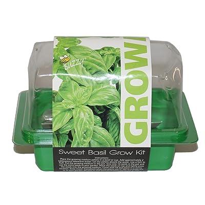 Buzzy Sweet Basil Grow Kit Mini Greenhouse : Garden & Outdoor