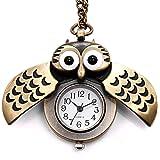 JewelryWe Birthday Gift Vintage Retro Owl Bronze Steampunk Locket Pocket Watch Pendant Long Chain 31.5 Inch