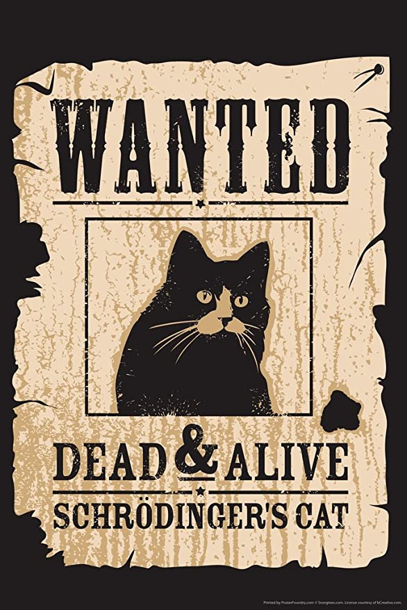 Amazon.com: Wanted Dead and Alive Schrodingers Cat Funny Humor Cool Wall  Decor Art Print Poster 12x18: Posters & Prints