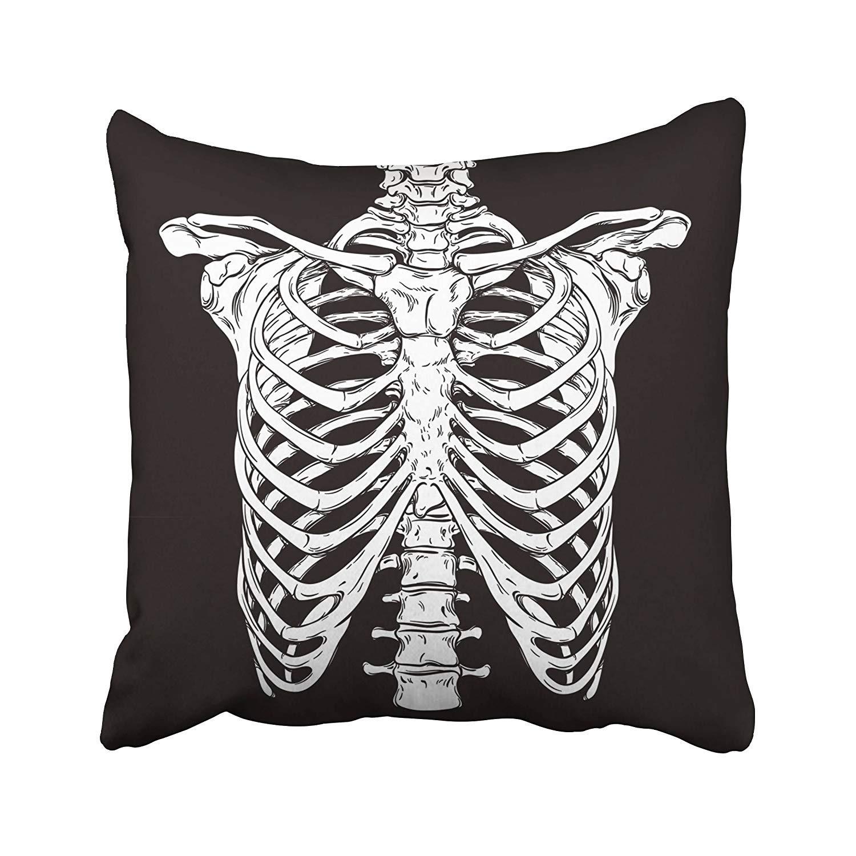 Amazon Nextchange Skeleton Line Anatomically Correct Human