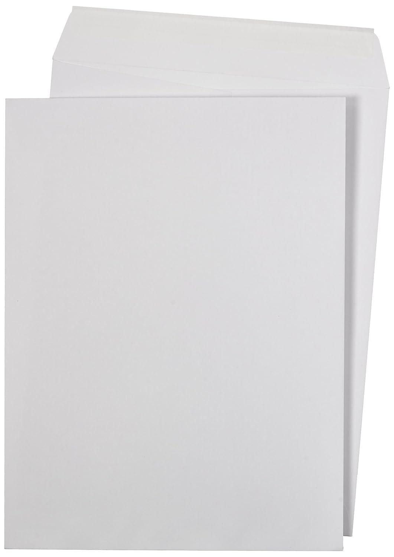 AmazonBasics Catalog Envelopes, Peel & Seal, 9 x 12 Inch, White, 250-Pack AMZA33