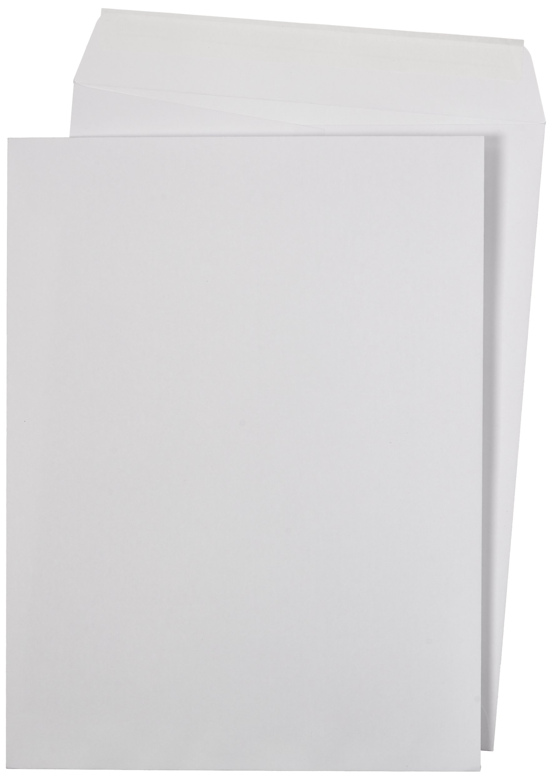 AmazonBasics Catalog Mailing Envelopes, Peel & Seal, 9x12 Inch, White, 250-Pack - AMZA33 by AmazonBasics
