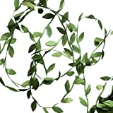 Hecaty 132 ft Olive Green Leaves Leaf Trim Ribbon for Baby Shower DIY Craft Party Wedding Home Decoration