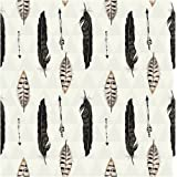 Creative Converting (317662) 16 Count Roar Quill Premium Patterned Luncheon Napkins, Multicolor