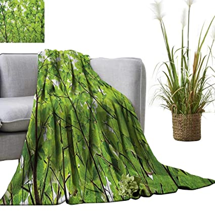 Amazon.com: Leaves Throw Blanket Close-up Tree Leaves from ...