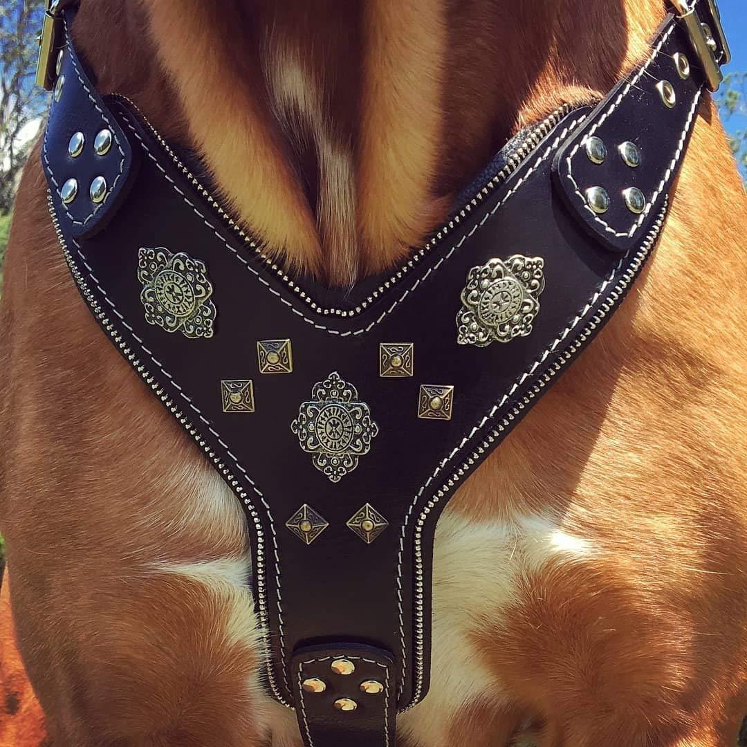 Bestia ''Aztec Black Chest Plate Harness. 2 Tone Rivet Decorations. Zipper Decoration. Foam and Leather Padding Handmade in Europe.