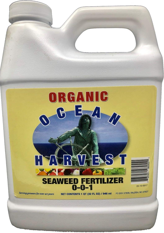 Liquid Seaweed Kelp Fertilizer by Ocean Harvest   Organic Fertilizer from Seaweed Extract for Plants   Organic Fertilizer for Vegetables   Liquid Kelp is a Liquid Fertilizer for Indoor Plants