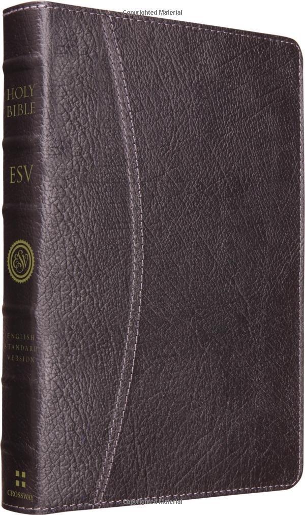 Download ESV Vintage Thinline Bible (Cowhide, Black, Hemisphere Design) ebook