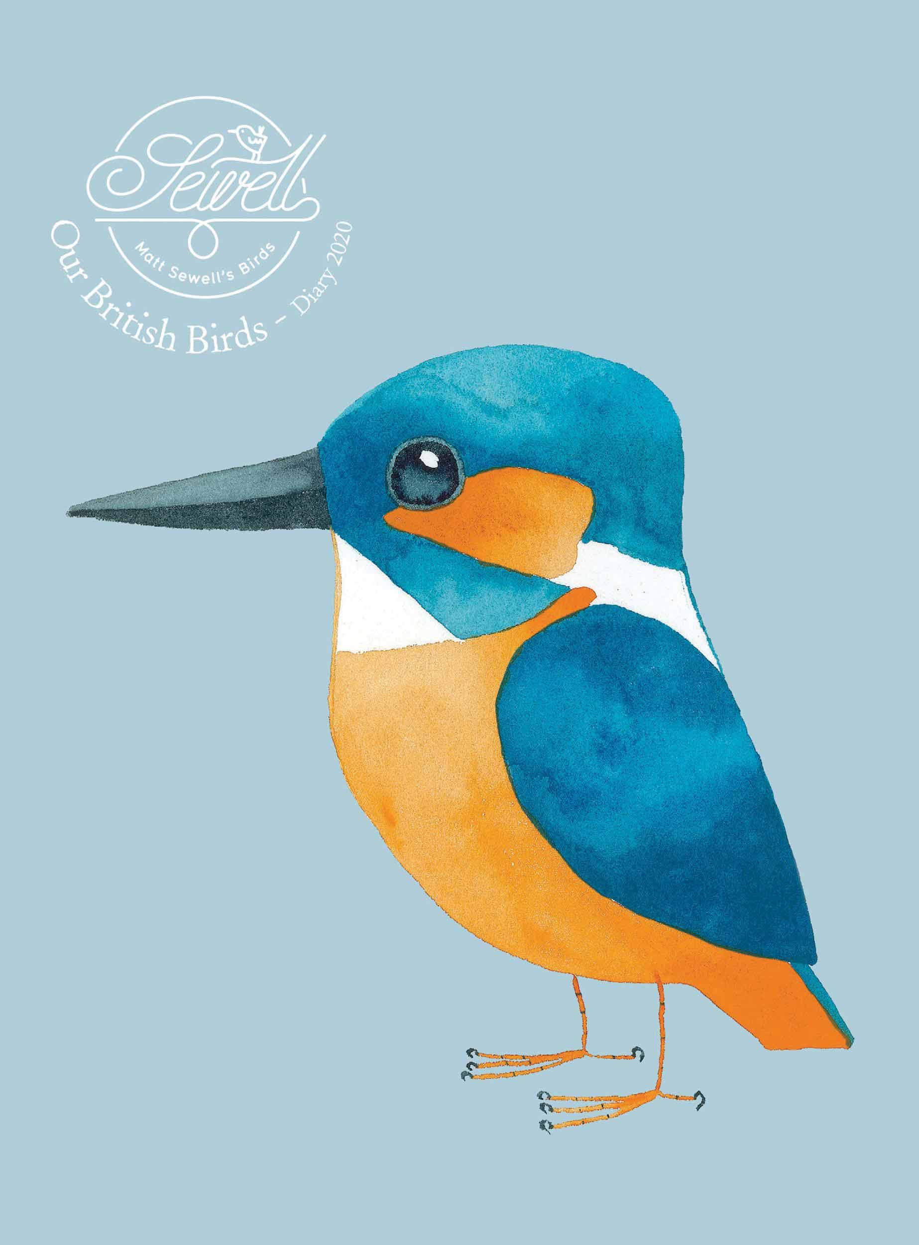 Matt Sewell/'s Our British Birds Deluxe A5 Diary 2019 Animals Week To View