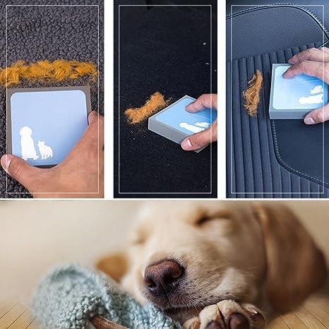 Ginkago Limpiador de Pelo para Mascotas, Levantador de Pelo, Cepillo de Limpieza, Herramienta