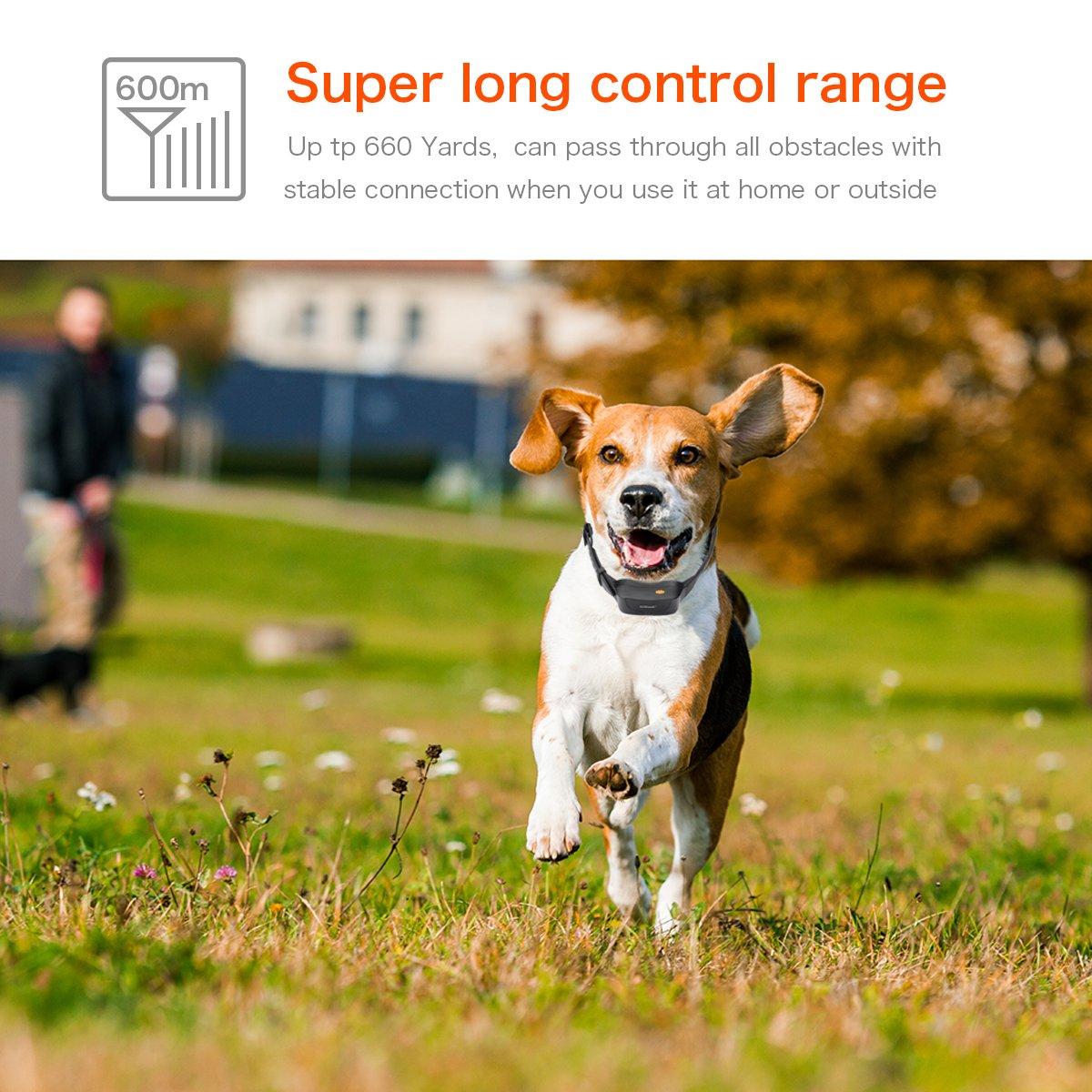 amazon com dog training collar iegeek 660 yard rechargeable