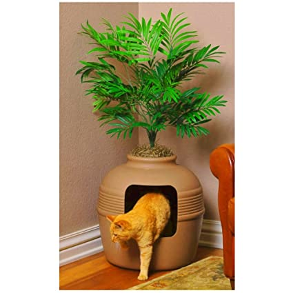 Amazon Com Large Cat Litter Box High Sides Covered Hidden With