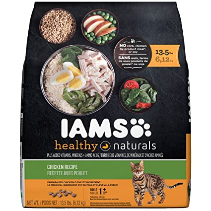 Amazon iams healthy naturals chicken recipe dry cat food 135 iams healthy naturals chicken recipe dry cat food 135 pounds forumfinder Image collections