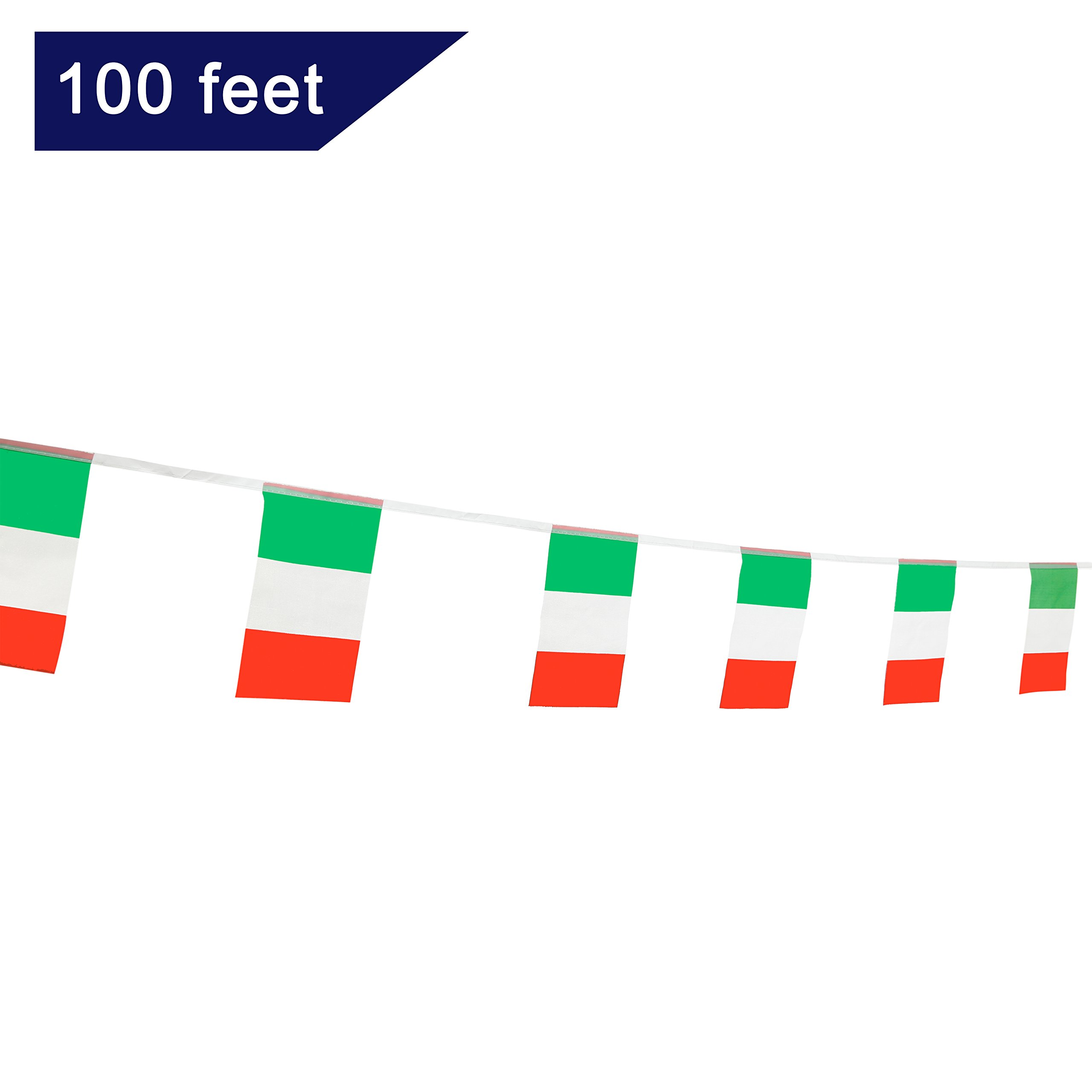 TSMD 100 Feet Italy Italian Flag,76Pcs Indoor/Outdoor National Country Flags Banner String,Party Decorations Supplies For Olympics,Bar,World Cup,International Festival(8.2'' x 5.5''