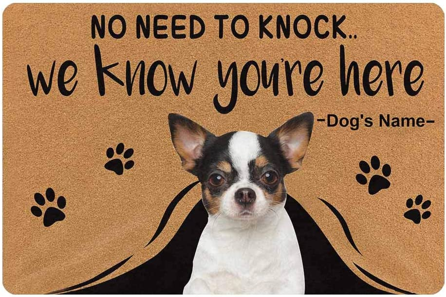 MyPupSocks Custom Personalized Text Name Pet Dog Cat Photo No Need to Knock We Know You're Here Doormat with Pet Name 23.6 x 15.7 Inches Door Floor Mat Outdoor Indoor Front Welcome Mat Kitchen Rug