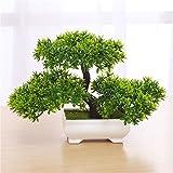 Bonsai Zehui None, 1 peça, verde